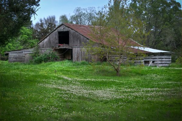 Greens crossing barn in Madison county by Lane Rushing ...