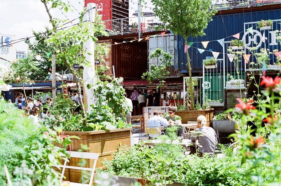 Frau Gerolds Garten Zurich Restaurants Bars Designer Stores And Urban Gardening Urban Garden Trees To Plant Community Gardening