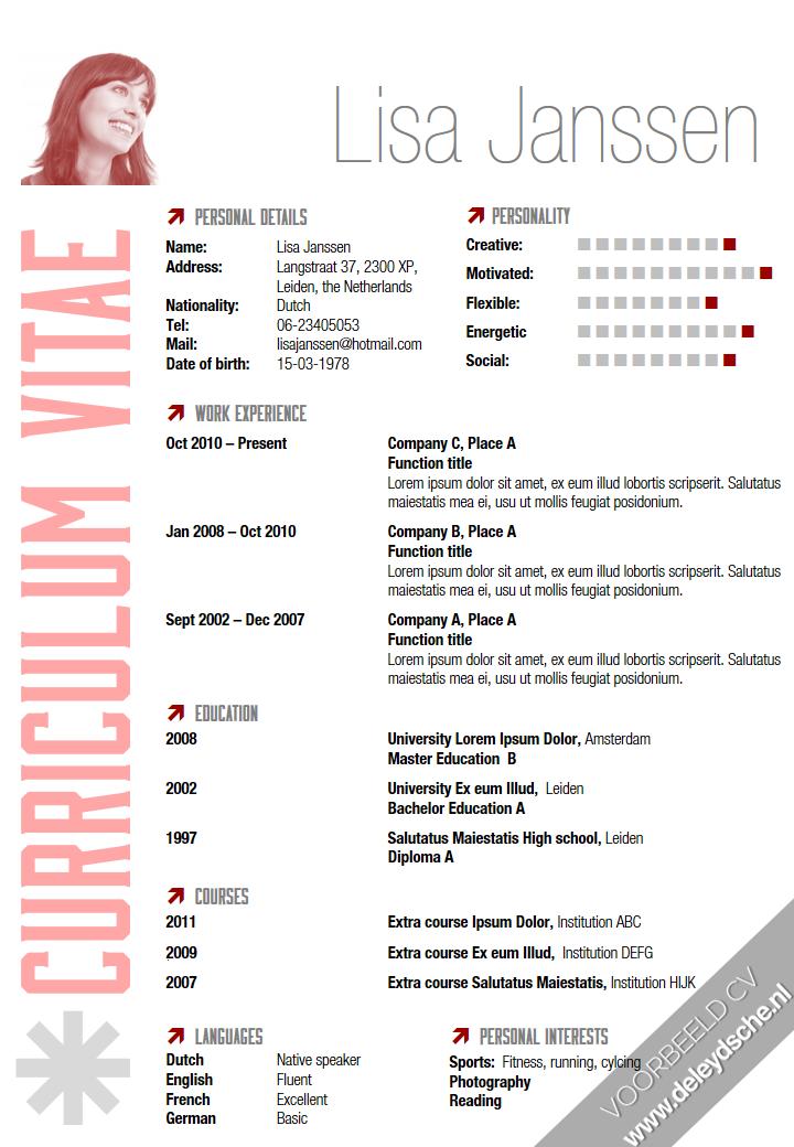 Voorbeeld Resume