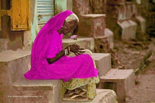 Die Liebe sprach zu mir, es gibt nichts außer mir, sei still!  Rumi