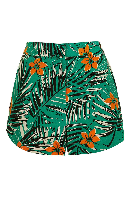 95fe04ca486f6 PETITE Miami Palm Print Shorts | Petite Style | Printed shorts ...