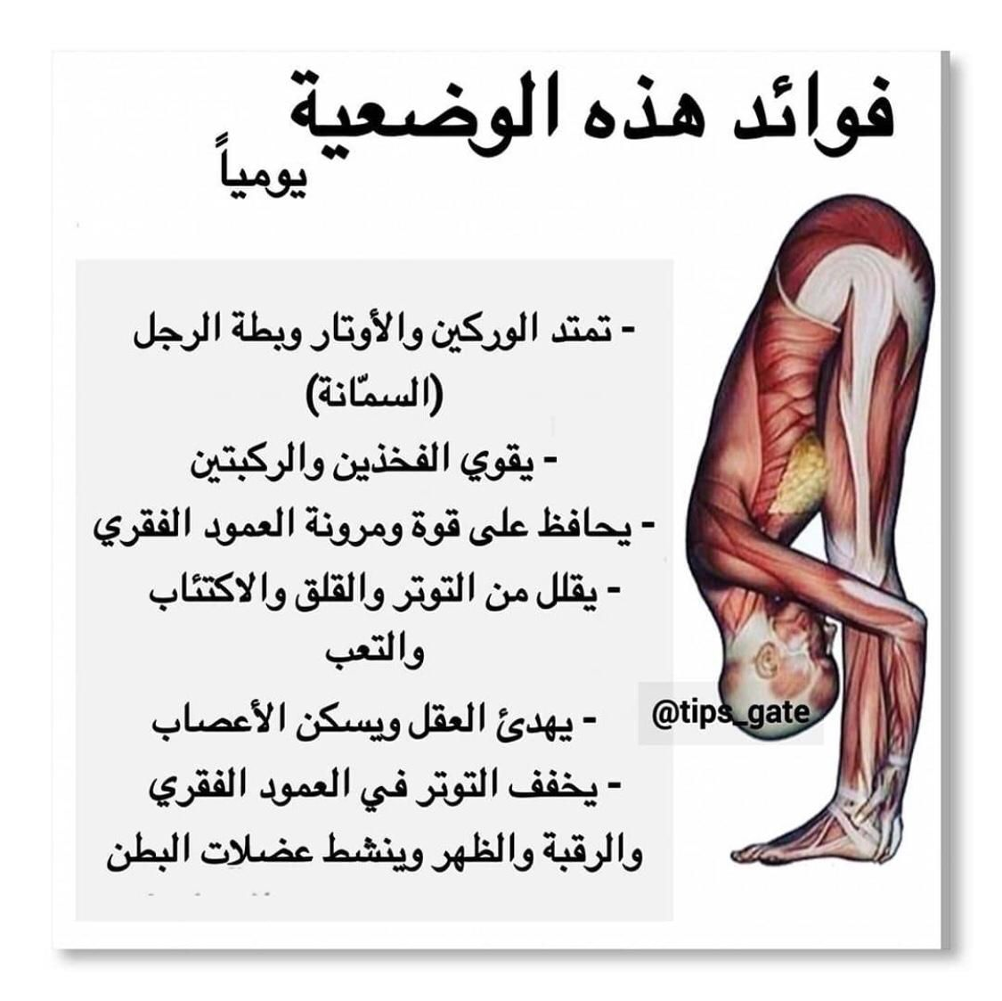 Pin By I Love You Iskander On Stretching Exercises Health Facts Fitness Health And Fitness Expo Health Fitness Nutrition