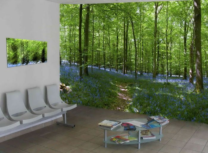 Wall Murals Nature Inspired By Nature   Wallpaper Mural Ideas . Part 16