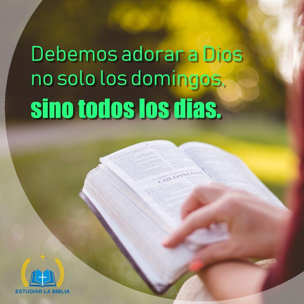 Debemos Adorar A Dios No Solo Los Domingos Sino Todos Los Dias Estudiarlabiblia Adoraradios Cristiano Frases Espirituales Felicitaciones Día Del Padre Dios