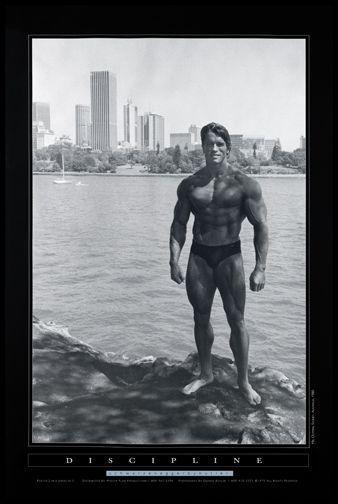 Google Image Result For Http Www Posters57 Com Images Arnold 20discipline Jpeg Arnold Schwarzenegger Pumping Iron Schwarzenegger