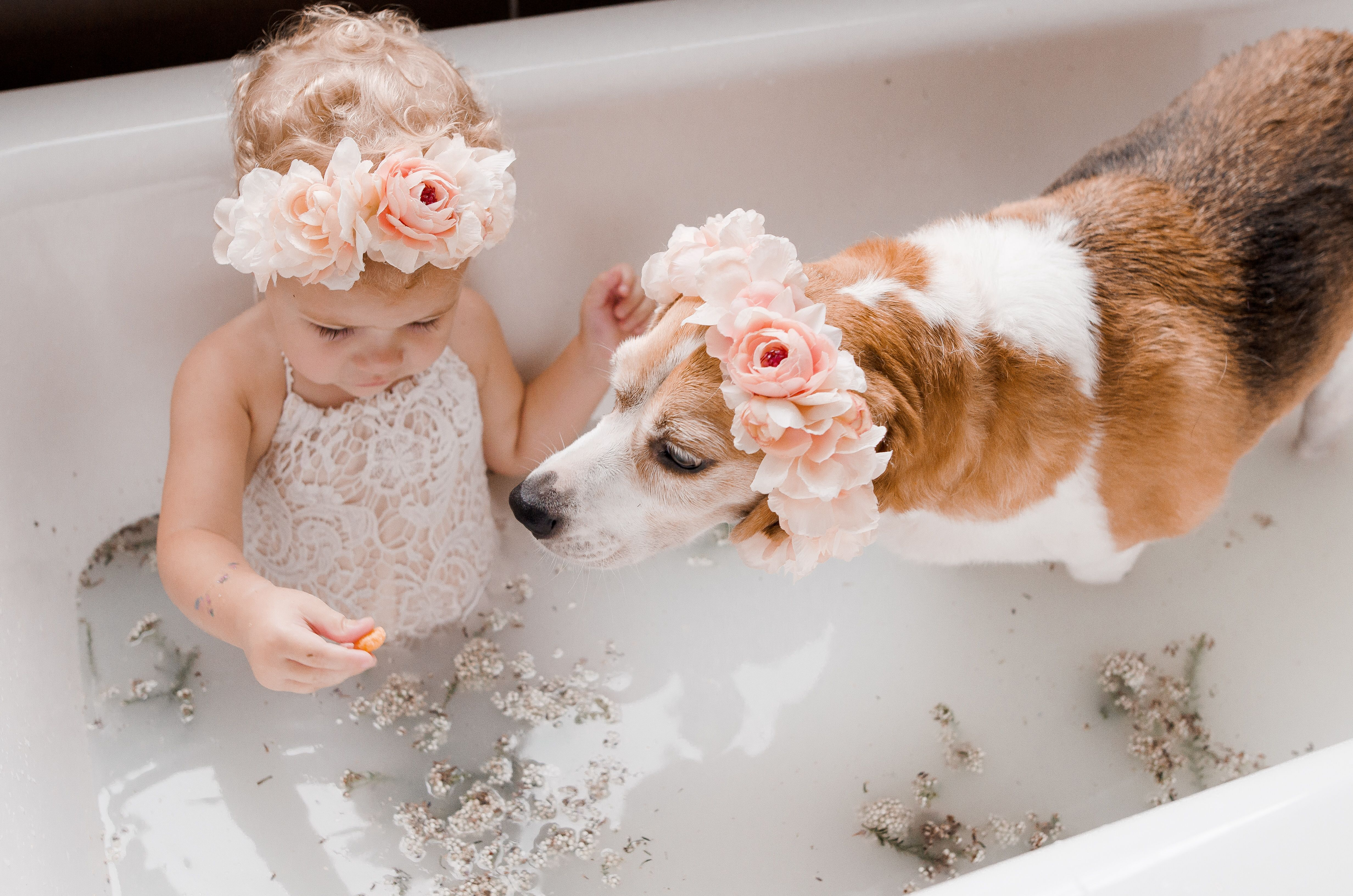 Baby And Dog Milk Bath Puppy Beagle Milkbath Dogbath Baby