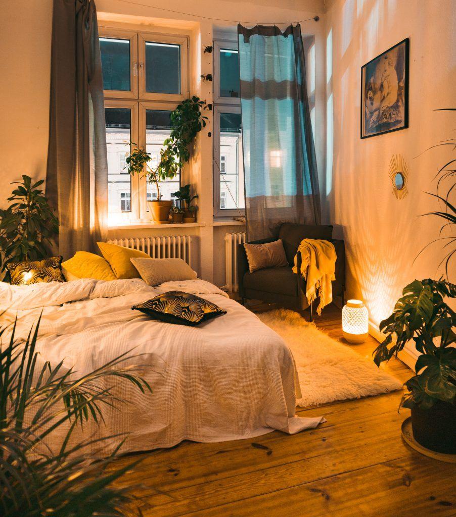 Photo of The 3 pillars of cosiness in golden autumn – fridlaa