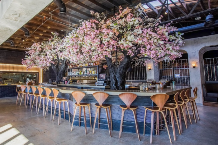 Dine Under An Enchanting Cherry Blossom Tree At This Magical Southern California Eatery Cherry Blossom Tree Blossom Restaurant Blossom Trees