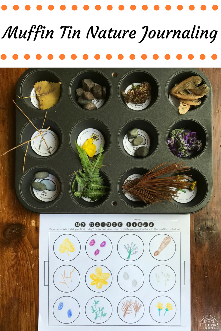 the muffin tin nature scavenger hunt and mandala makers activity gives children the opportunity to art therapy activities nature scavenger hunts mandala making the muffin tin nature scavenger hunt