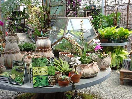 hot house main display | Display, House and Garden shop