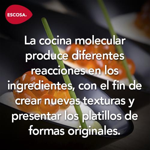 La cocina molecular  Cocina Molecular  Cocinas