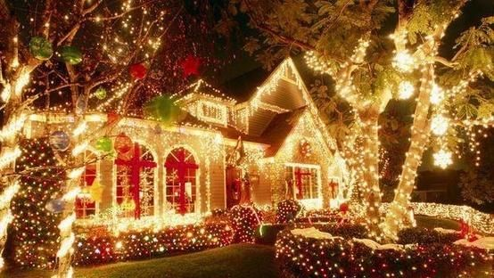 If Dan would hang the lights like this! Christmas time is here