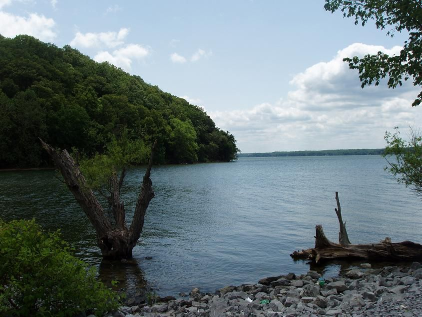 Kentucky and Barkley Lakes My Old