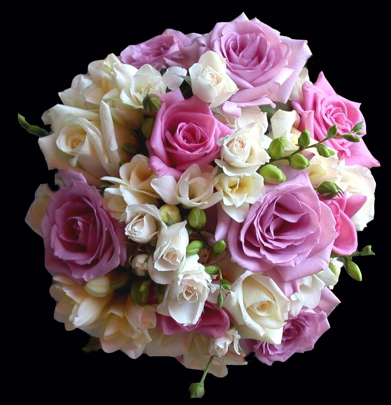 Purple And Pink Wedding Flowers Purple And Cream Rose And Freesia