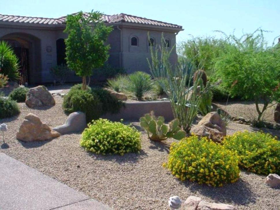 Front Yard Desert Landscaping Yard Desert Landscaping Adorable