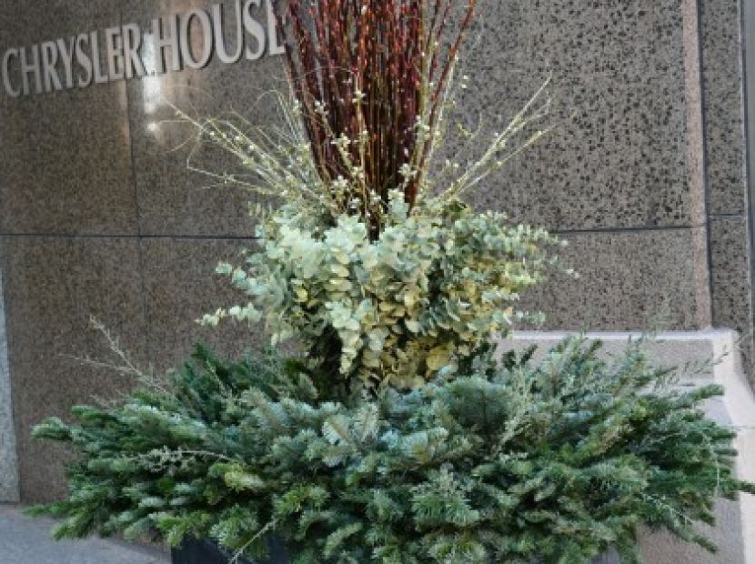 Holiday Dirt Simple Container Plants Container