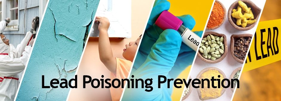 Lead poisoning prevention information from the colorado