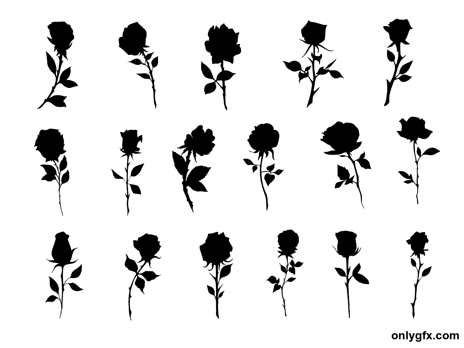 17 Rose Silhouette Png Transparent Onlygfx Com Silhouette Png Silhouette Transparent