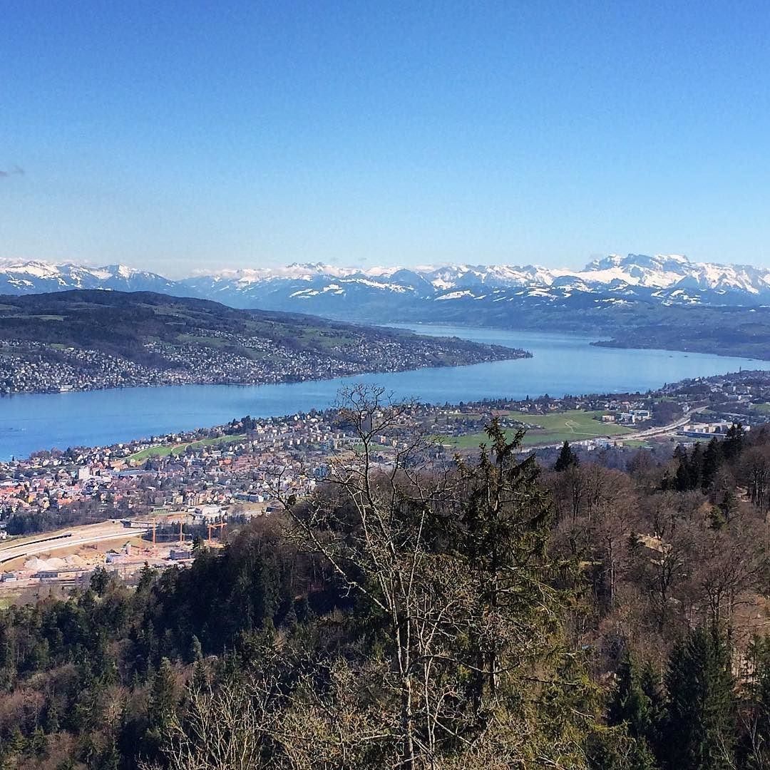 On a clear day like today the view of Zürich is fantastic. #zurich #zuri #lake #view #switzerland #alps by geo_papp