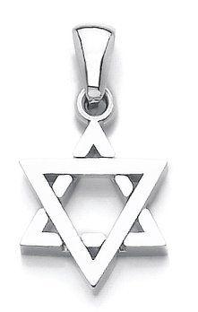 14k White Gold Textured 3D Jewish Star of David Pendant Necklace