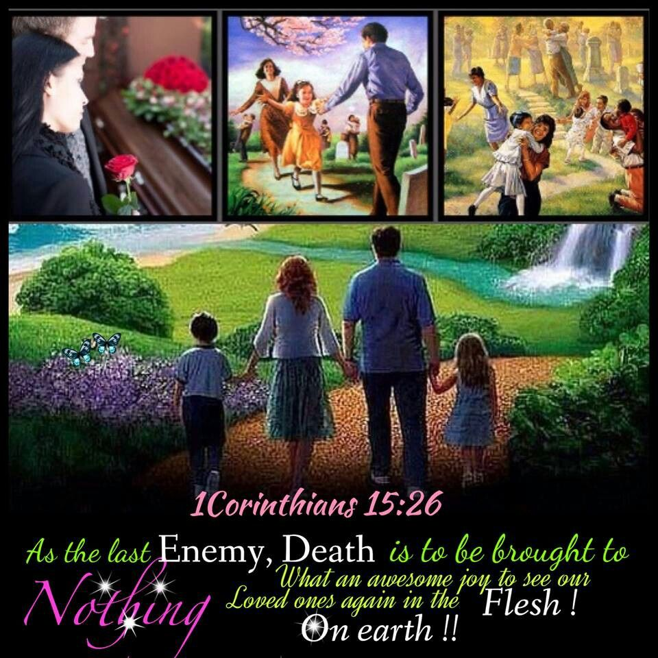 """As the last enemy, death is to be brought to nothing. - 1 Corinthians 15:26. Let his flesh become fresher than in youth;  Let him return to the days of his youthful vigor.' - Job 33:25. And no resident will say: """"I am sick."""" The people that are dwelling in [the land] will be those pardoned for their error - Isaiah 33:24."""