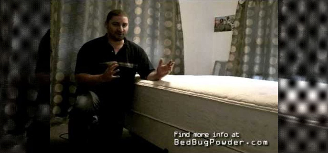 How to Get rid of bed bugs using a steam cleaner Diva