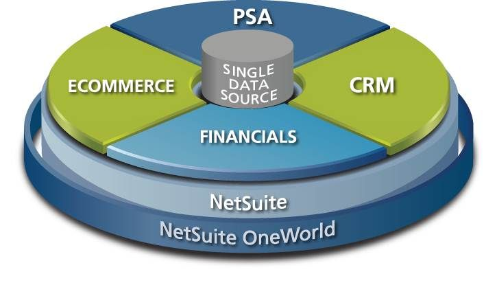 The Netsuite Wheel Showing The Core Components Of This Complete Business Solution And Oneworld Allows You To Manage Your Glo Business Solutions Crm Solutions