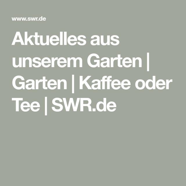 Aktuelles Aus Unserem Garten Garten Kaffee Oder Tee Swrde