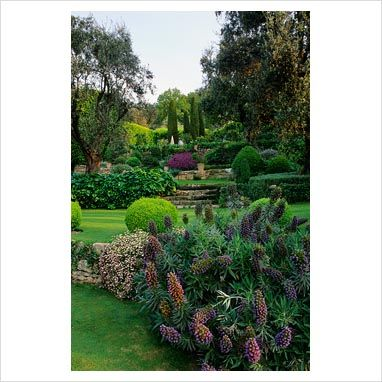 GAP Photos - Garden & Plant Picture Library - La Casella, France - GAP Photos - Specialising in horticultural photography