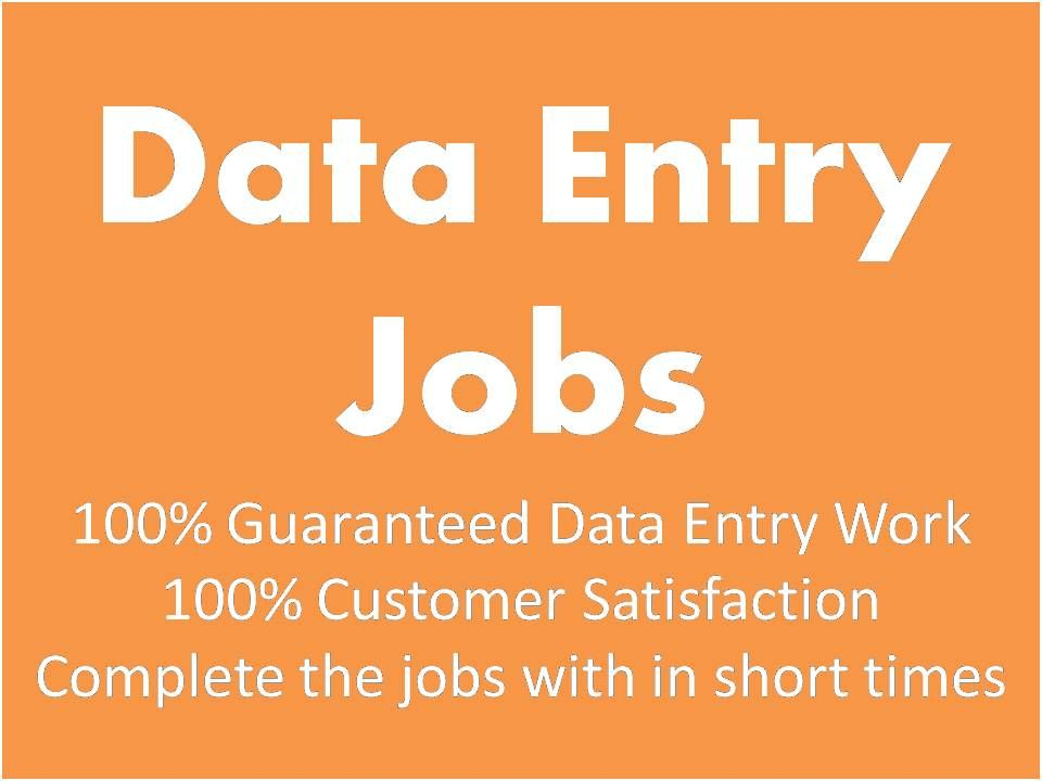 I Am Second Level Seller On Fiver I Word As A Professional Data Entry Operator Http Www Fiverr Com Best99 Do D Data Entry Online Data Entry Data Entry Jobs