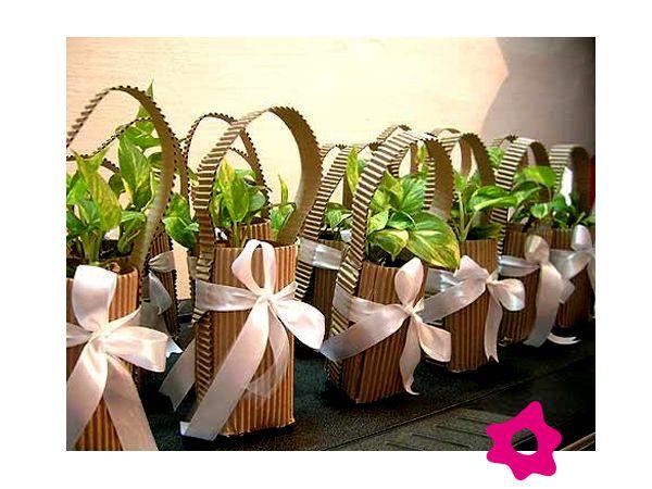 plantas como souvenirs para los invitados de la boda