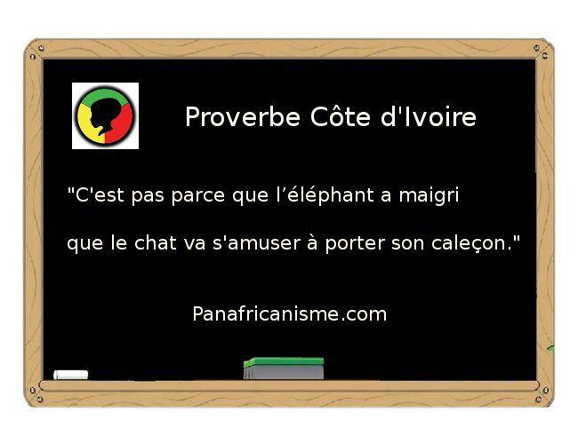 Épinglé par Nathalie Dia sur Humour | Proverbs quotes, Quotes et