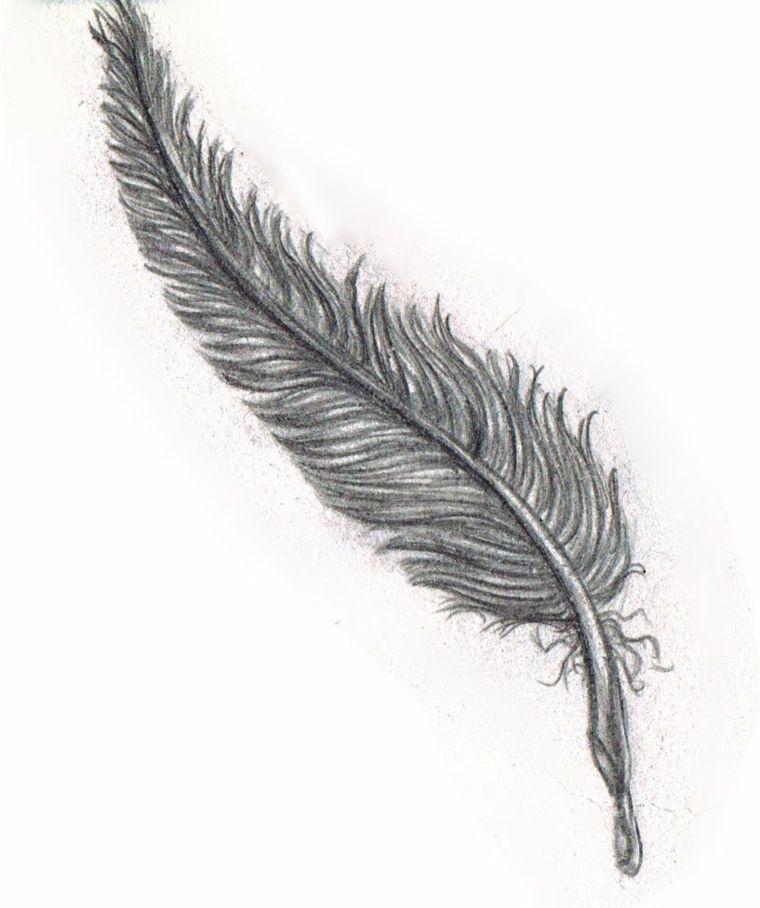 Disegni facili da copiare matita idea piuma protagonita for Immagini disegni facili