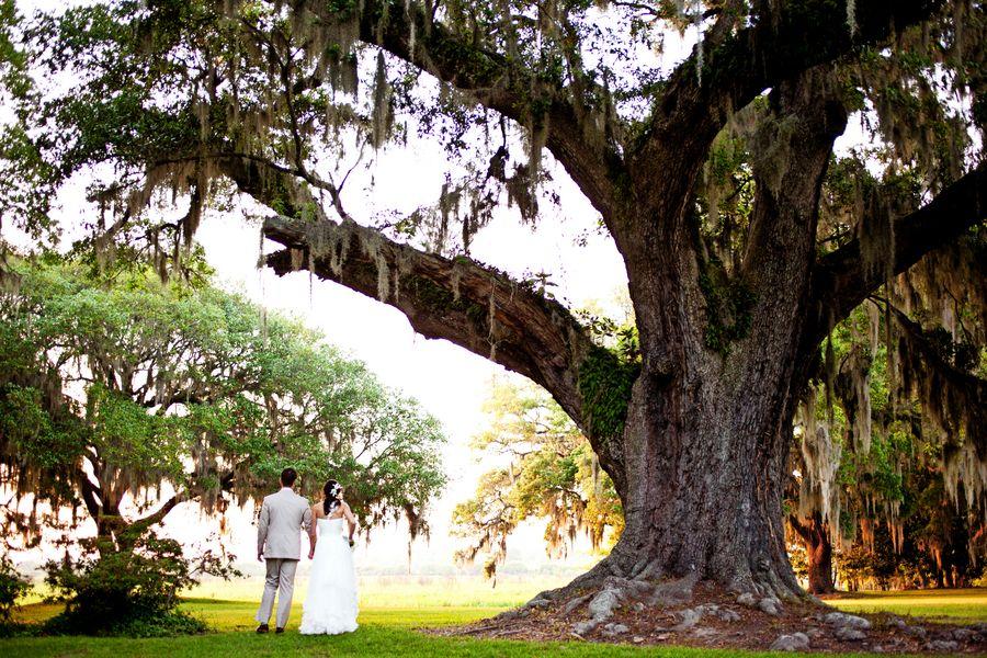 Pawleys island plantation wedding venues