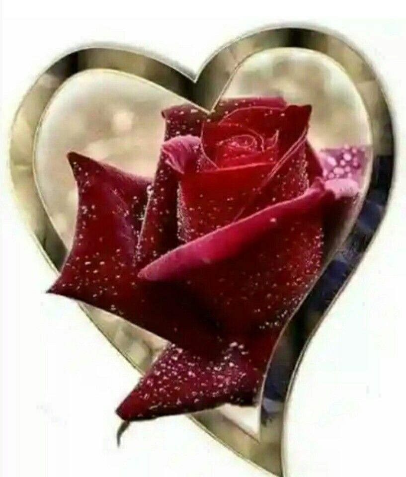 Pin Oleh Lidwina Di Hearts Seni Gambar Bunga
