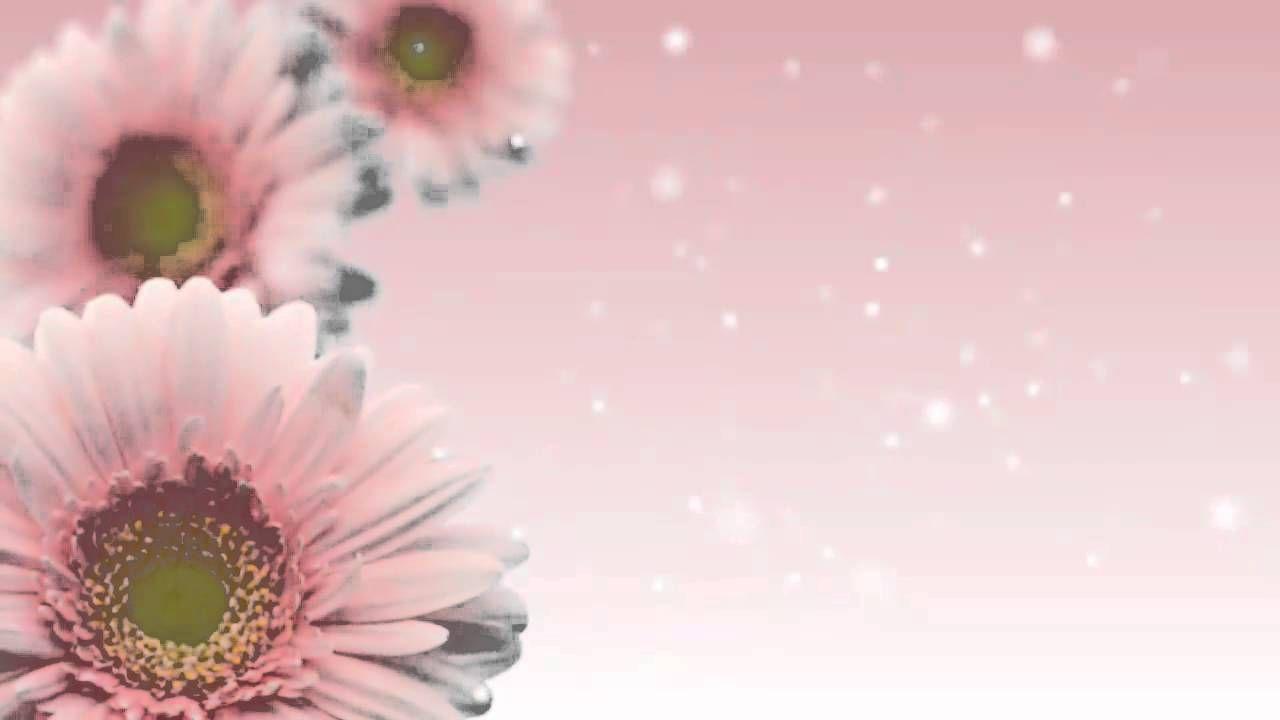 خلفية متحركة 1 Anime Artwork Food Illustrations Floral