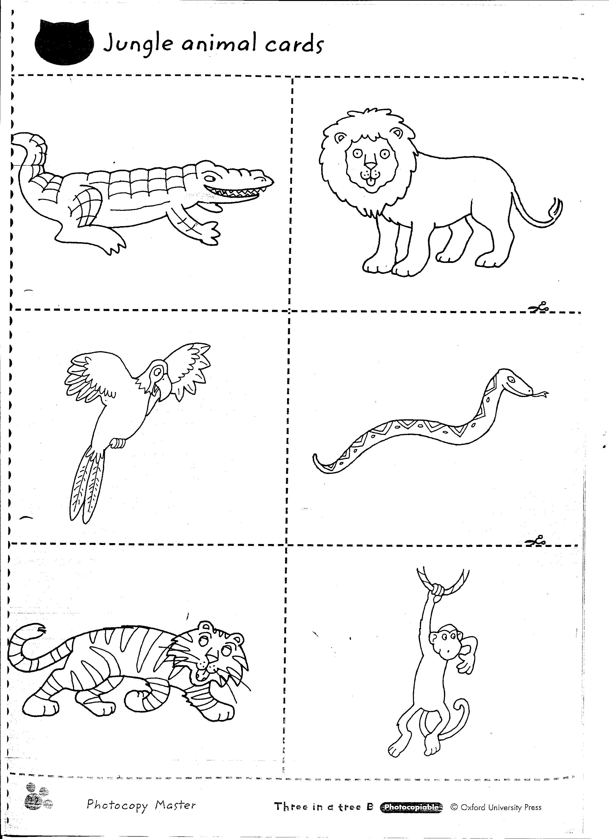 1st Grade Science Worksheets