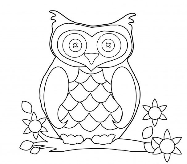 Owls With Fur Thickness Buku Mewarnai Adult Coloring Pages