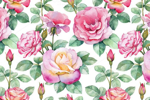 Check out Watercolor illustrations of rose by Sundra on Creative Market