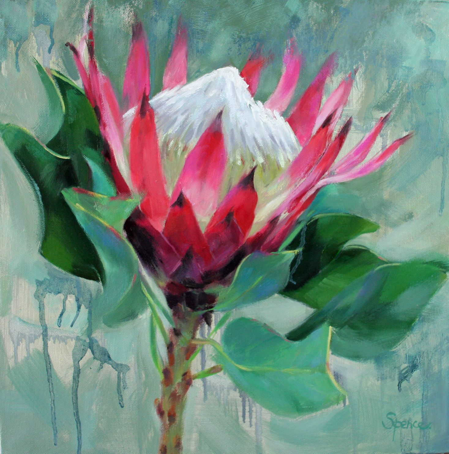 Pink Flame Protea Flower Oil Painting Protea Art Flower Art Abstract Canvas Art