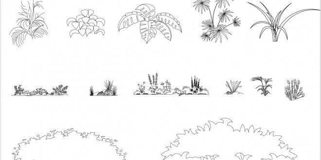 Free cad blocks plants and bushes 01 - Dessin vegetation ...