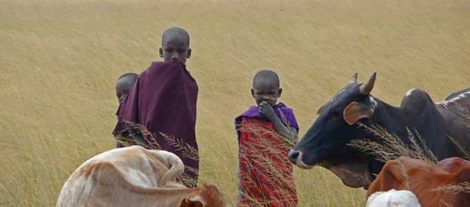 Service trips abroad · Sustainable Travel