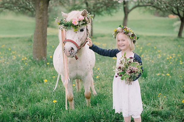 mit diesem pferd werden doch mädchenträume wahr oder