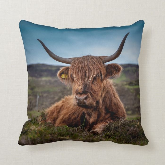 Highland Cow Baby Throw Pillow