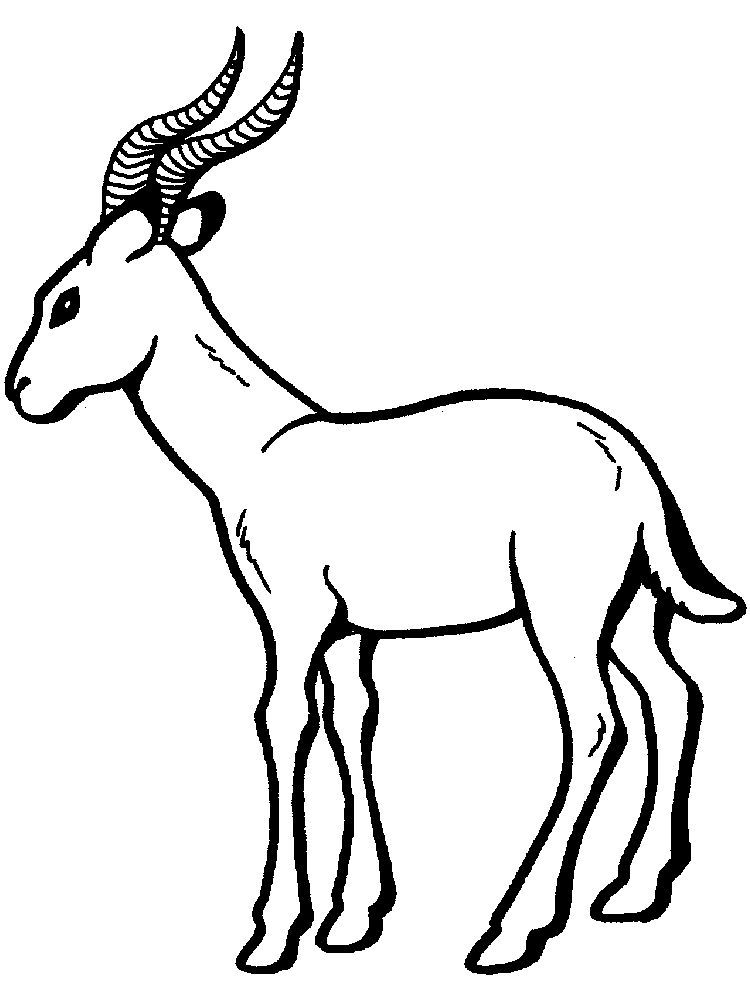 Printable Impala Coloring Pages For Kids Di 2020