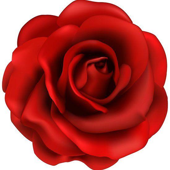 Rose Love Floor Pillow By Wealthyro9 In 2021 Rose Flower Png Red Rose Flower Rose Flower