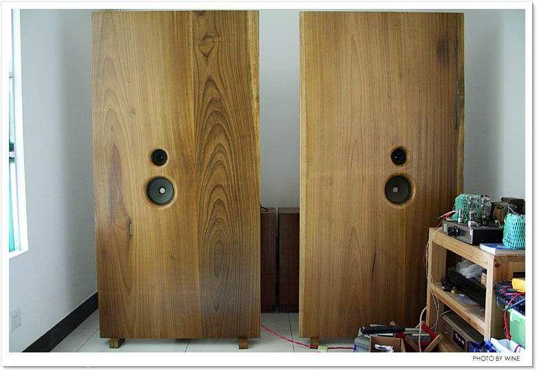 Wow  Now this is an Open Baffle speaker    Open Baffle / Full Range