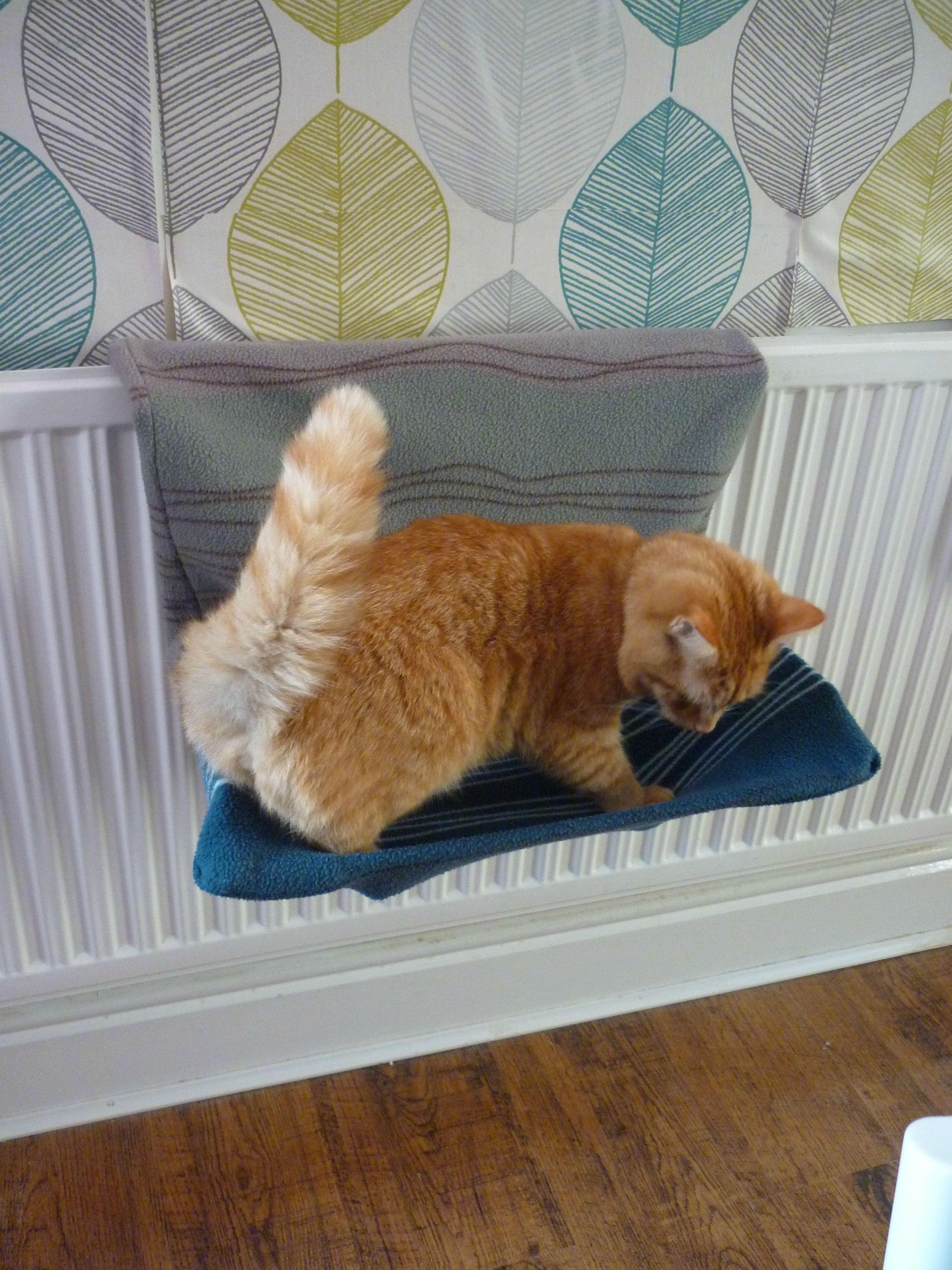 Diy Radiator Cat Bed Cover Dreamy Pets Diy Cat Bed