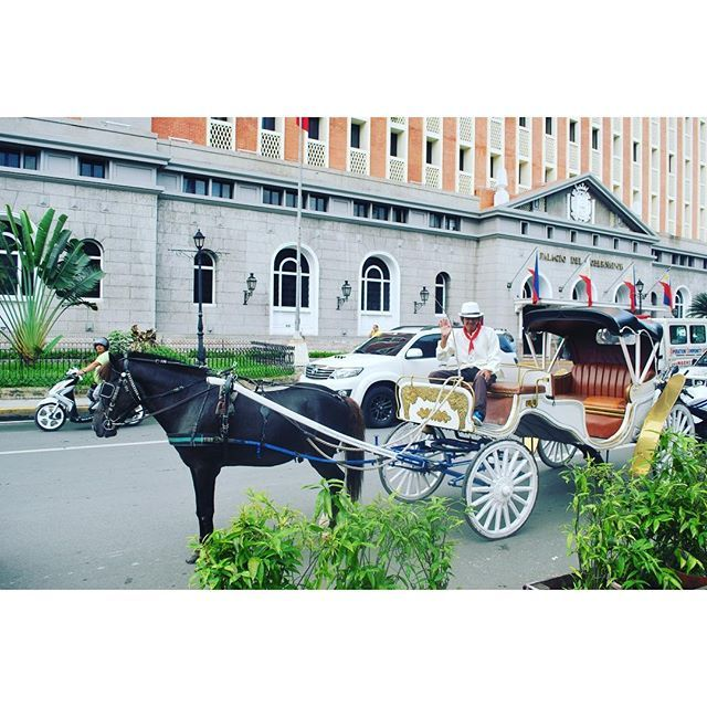 I had the privilege of #travelling round #OldTown #manila by horse and carriage yesterday. #Philippines #itsmorefuninthephilippines #travel #travelpic #transport #tbex :racehorse::heart::earth_americas::smiley: