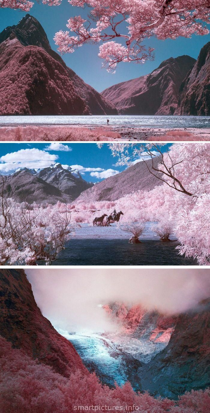 Dreamy Images Of New Zealand In Pink Captured With